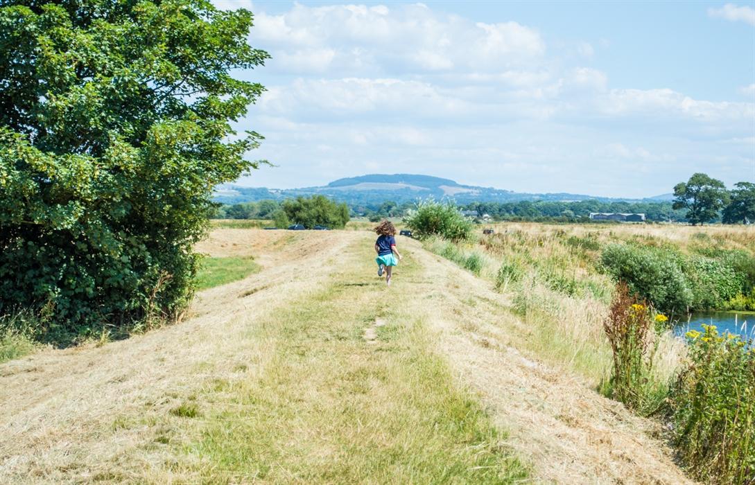 Festival Bowland 2020 - Wildlife Explorer on the Green